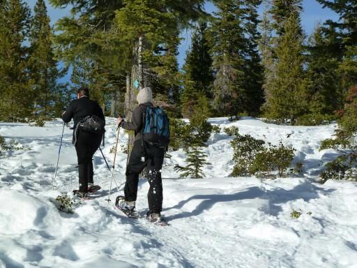 Ski, Snowboard, Snowshoe