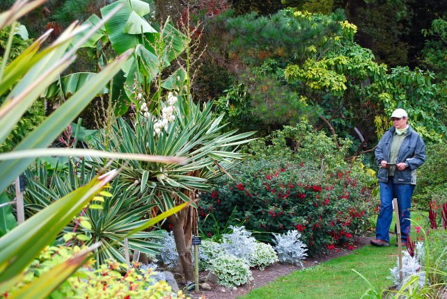 Savill Garden near Windsor