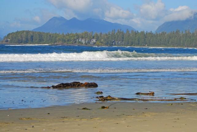 Beachcombing at Wickaninnish Inn