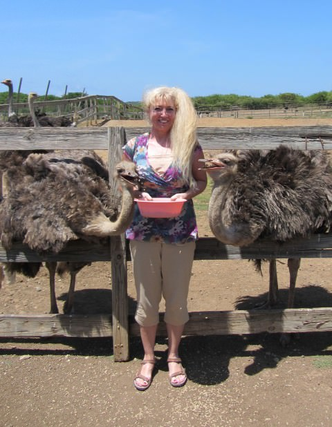 Patti Morrow Feeding the Birds at Curacao Ostrich Farm