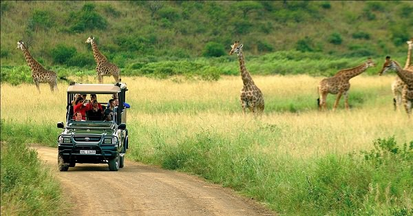 Travel Deals: African Travel, Inc.'s Great Zimbabwe Adventure