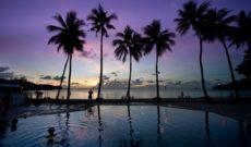 Travel Republic of Palau – Pleasing Our Palates in Palau