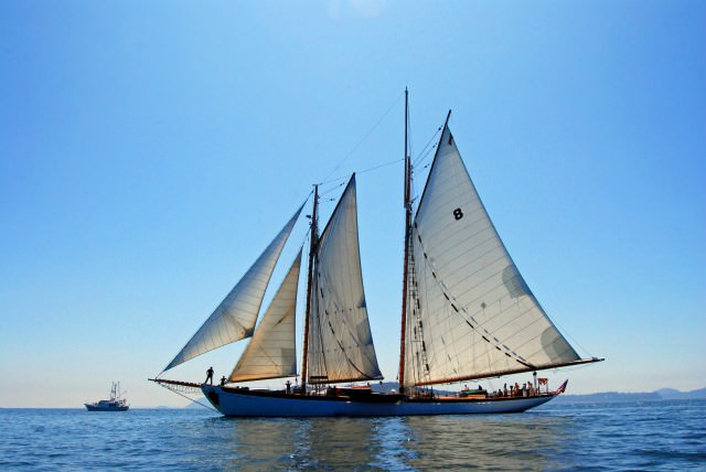 WAVEJourney.com Joins the Schooner Zodiac Spirits and Seafood Cruise in the San Juan Islands