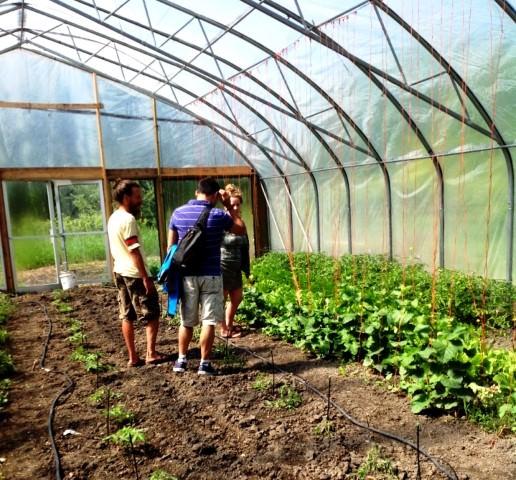 Regina, Saskatchewan - Heliotrope Organic Farm