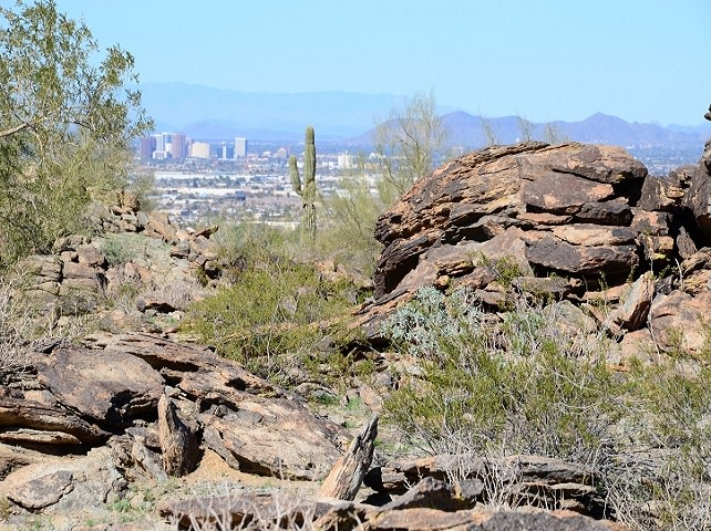 South Mountain Park View