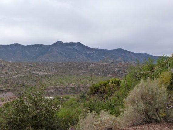 Santa Catalina Mountains seen from Saddlebrook