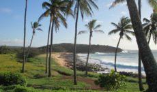 Travel Hawaii: Mucking About on Molokai