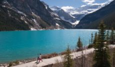 Wish You Were Here – Postcard From Lake Louise