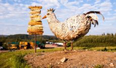 Travel the Alaska Wilderness: Chicken Gold Camp & Outpost