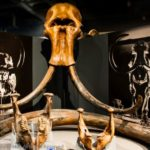 The Best Museum in Fairbanks - The University of Alaska Museum of the North.