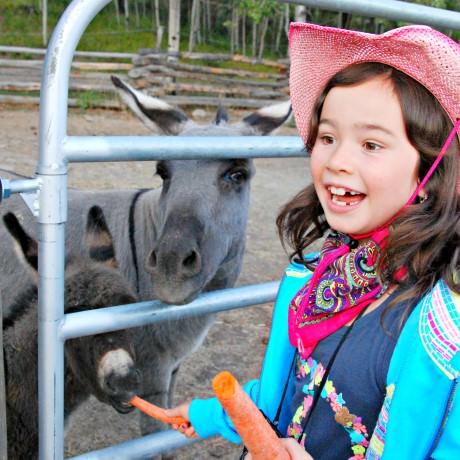 Jada Feeding Carrots to the Donkeys