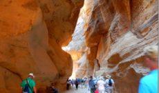 Day 19: Aqaba (Petra), Jordan with Holland America