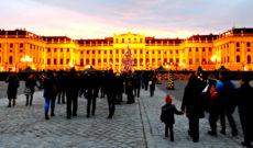 Schonbrunn Palace Christmas Market in Austria