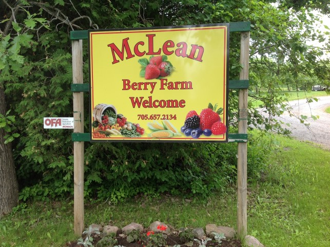 Kawarthas Region - McLean Berry Farm