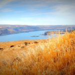 View of the Columbia River from Maryhill Museum