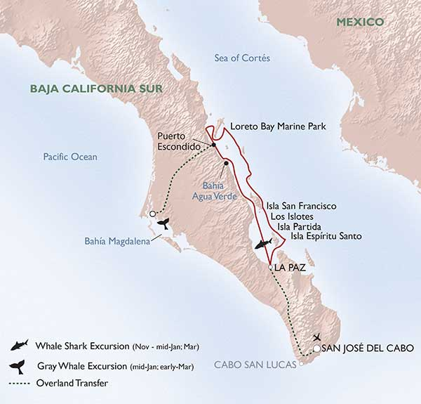 Un-Cruise Adventures - Baja's Bounty Itinerary