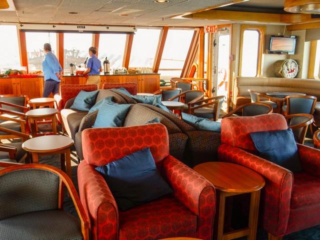 Safari Endeavour Lounge
