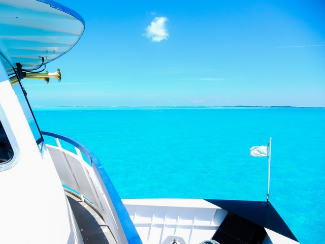 Shallow Tropical Waters in The Bahamas