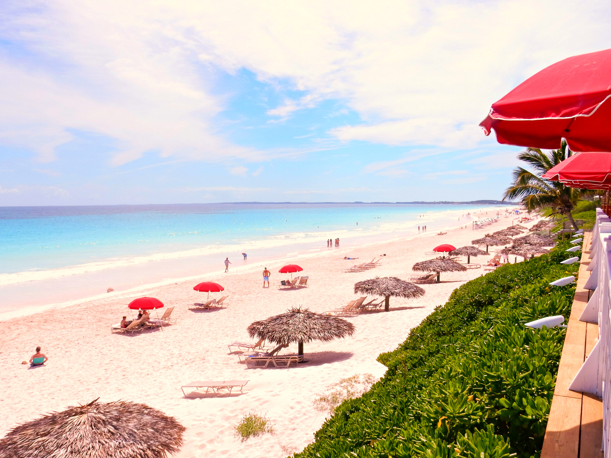Pink sand beach on harbour island full width photo of for Pink sand beaches bahamas