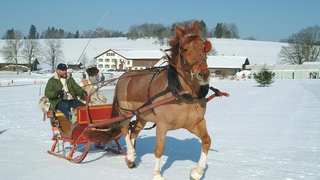 Winter Travel Tips & News for Switzerland