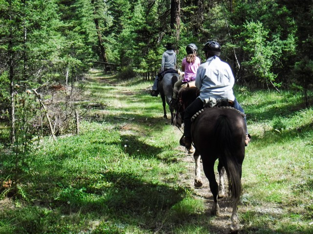 Horse Riding on Wooded Trails at Echo Valley Ranch