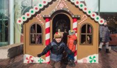 Toronto Christmas Market in Canada