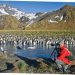 Cruise News: Lindblad Expeditions-National Geographic Bioblitz in Sub-Antarctic