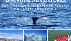 Top 7 Reasons To Explore Alaska On UnCruise Adventures Safari Endeavour